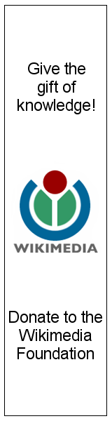 Donate to the Wikimedia Foundation